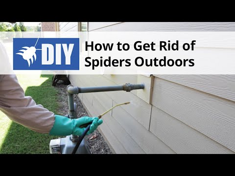 How To Get Rid Of Spiders Outdoors