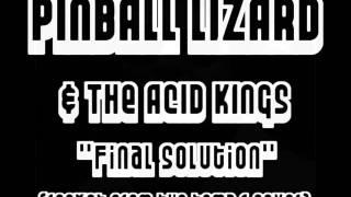 Pinball Lizard & The Acid Kings - Final Solution
