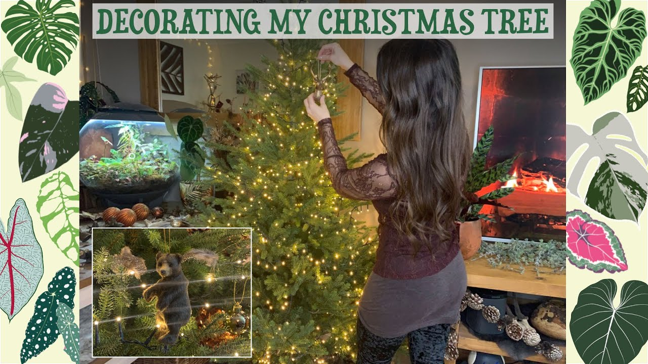 Decorating My Indoor Jungle For Christmas 🌱🎄✨🌿🦌🌴 Woodland/Rustic/Log Cabin Style 🦌❄️🕯🐻
