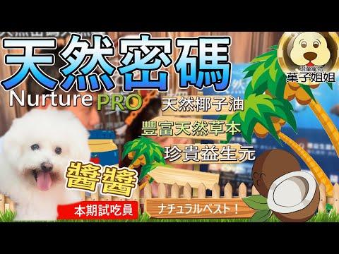 【🐱🐶培菓寵物48H出貨🐰🐹】(送購物金50元) 天然密碼》成犬低敏鮭魚狗糧454g 特價340元自取不打折蝦
