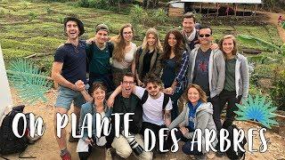 ON PLANTE DES ARBRES ! - TANZANIE DAY 5