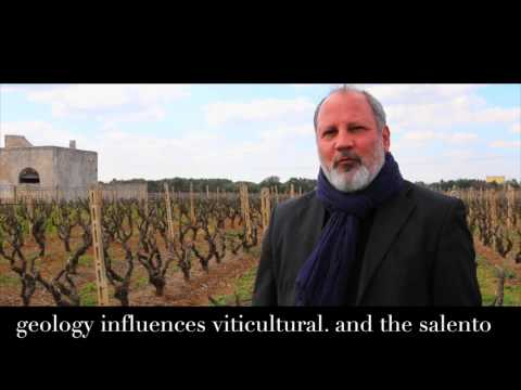 wine article Cooking in Italy geology and the wine of the salento