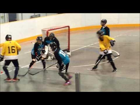 2016 Ball Hockey Provincials Richmond Major Vs Surrey Major (2-1 Richmond)