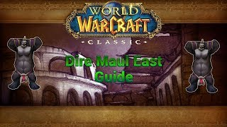 Classic WoW Dungeon Guide: Dire Maul East (56-60)