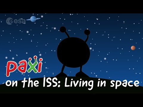 Paxi on the ISS: Living in space