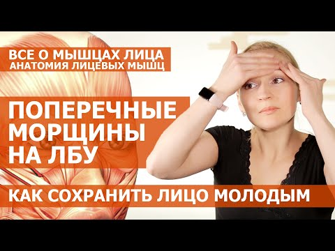 КАК УБРАТЬ ПОПЕРЕЧНЫЕ МОРЩИНЫ НА ЛБУ. Анатомия мышц лица. Как сохранить лицо молодым