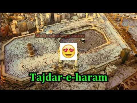 💗Tajdar e haram ¦¦ Atif Aslam Special - Whatsapp status video😚