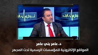د. عامر بني عامر - المواقع الإلكترونية للمؤسسات الرسمية تحت المجهر