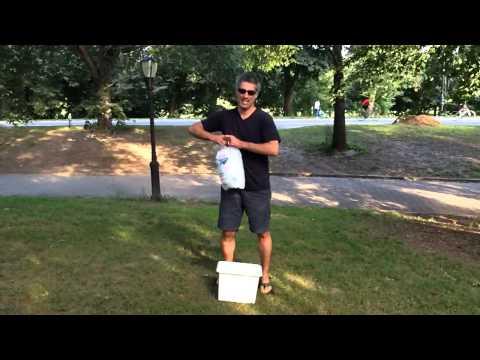 Safian ALS challenge