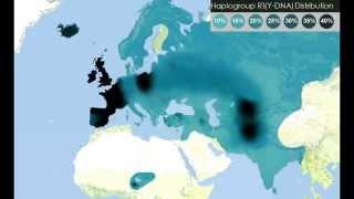 Y-DNA Haplogroup in world