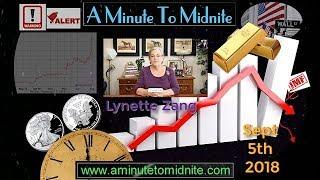 Lynette Zang -  Get Ready for a Rough Ride - Pre crash, Prepare Now!