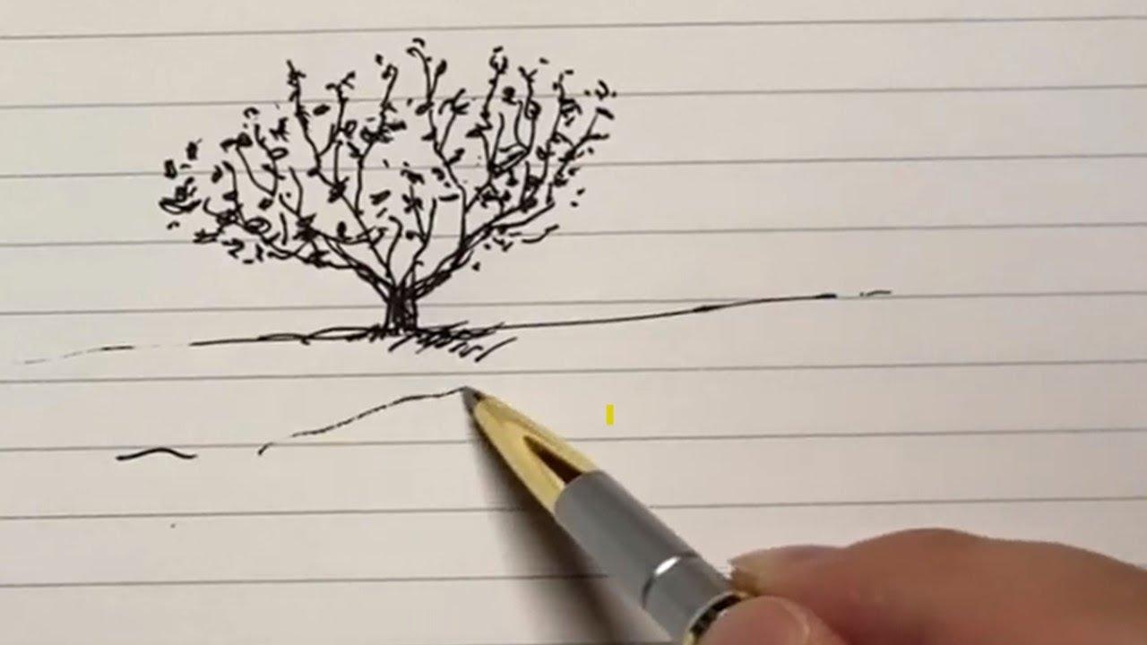 성경을 그립니다 | 나무 좋아하세요?