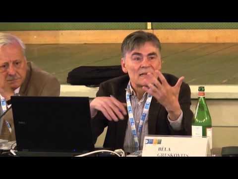 Phoebus Athanassiou, Cyprus's Membership of the EU and the Euroarea