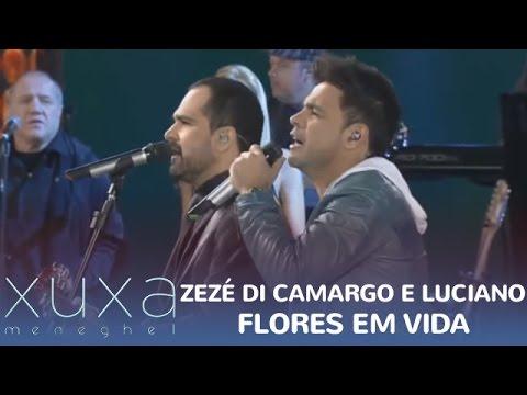 """Zezé Di Camargo e Luciano cantam """"Flores em Vida"""""""