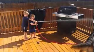 Funny  Funny Babies With Funny Dog German Shepherd Videos  News 2014