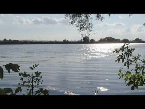 КРАСИВОЕ ВИДЕО !! Звуки природы, река Ока, старое русло, пение птиц, Relax, природа, медитация.
