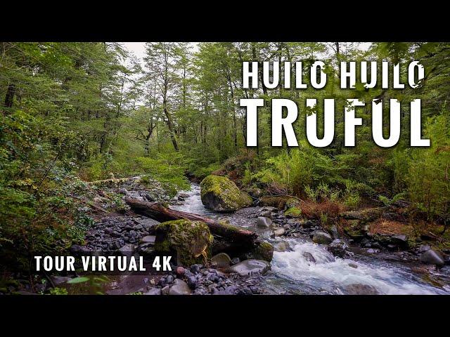 Huilo Huilo Sendero Truful en 4K: Trekking 5 Kms. Virtual Tour & Relax Music