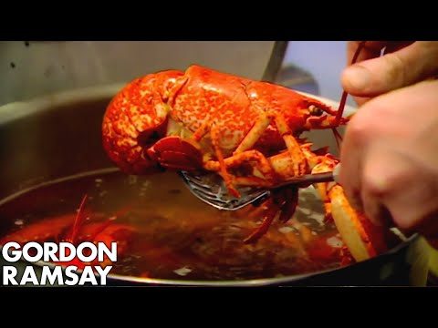 Cooking Lobster with Jeremy Clarkson - Gordon Ramsay thumbnail