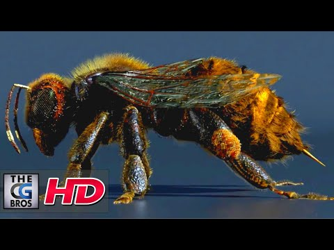 "CGI & VFX Breakdowns: ""A Foraging Honey Bee Breakdown"" - by Ayoub Chaibi 