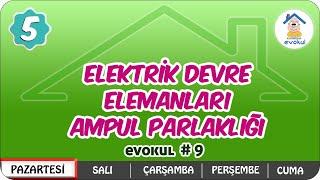 Elektrik Devre Elemanları / Ampul Parlaklığı  5.Sınıf uzaktanegitim evokul Kampı