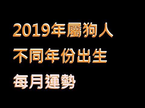 ☯️2019年屬狗人不同年份出生的🐕全年運勢大全[2019年🐕每月運勢][純文字]