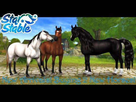SSO ~ New Arrivals, Buying 2 new horses!