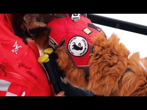 SheJumps Wild Skills Junior Ski Patrol at Crystal Mountain - Video Recap