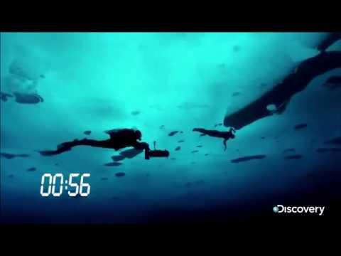 Record du monde de nage sous une couche de glace youtube - Record du monde developpe couche ...