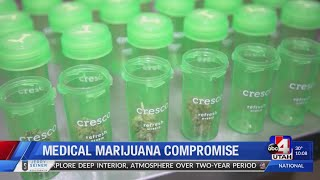 Marijuana Bill Hearing