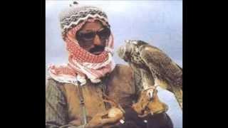 saker falcon arab falconry