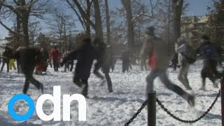 Giant snowball fight breaks out in Washington DC