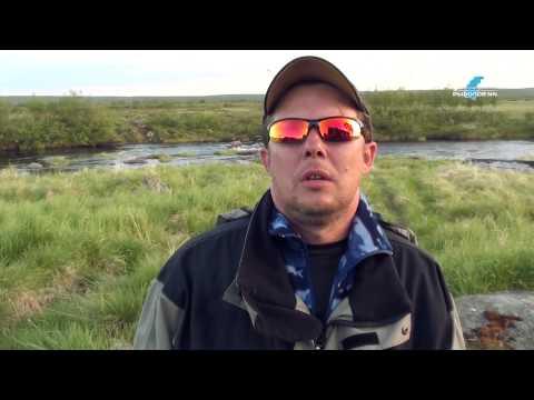 рыболов эксперт в чапаевске