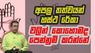 අපල තත්වයන් හස්ථ රේකා වලින් කොහොමද පෙන්නුම් කරන්නේ | Piyum Vila | 11 - 11 - 2020 | Siyatha TV Thumbnail