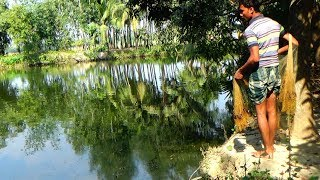 Net Fishing   Catching Fish With Cast Net   Net Fishing in the village (Part-202)