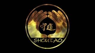 Обучение рукопашному бою в манере Шоу-Дао / Shou-Tao martials