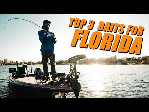 Three Must Have Baits For Florida Bass Fishing