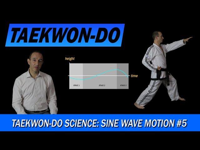 Taekwon-Do Science: Sine Wave Motion #5