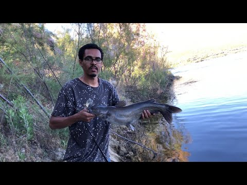 Vail Lake , Temecula Ca Fishing