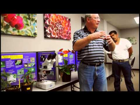 Why the Microscope is Your Best Friend in the Ornamental Plant Industry