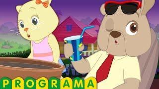 pegadinha de água de gatinhos vs cachorros | show de comédia | chuchu tv pegadinhas divertidas