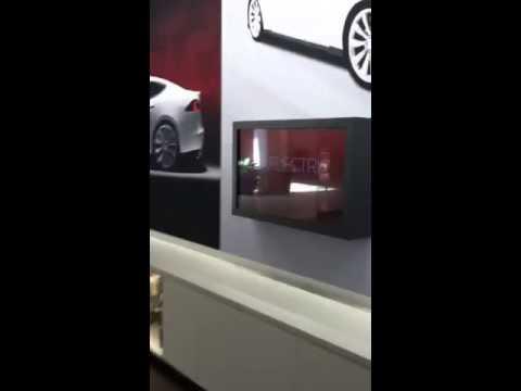 Tesla Model S Sales Talk