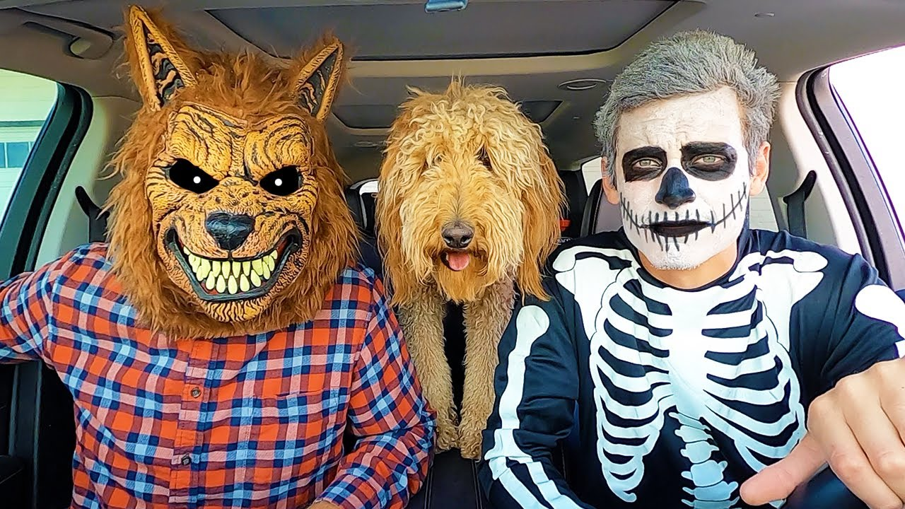 Wolf Surprises Skeleton & Puppy With Car Ride Chase!