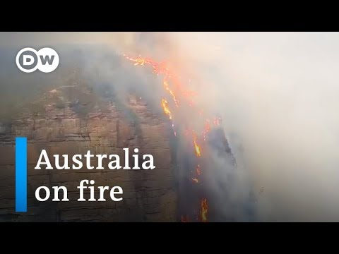 Australia's fires blaze out of control near Sydney | DW News