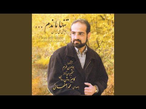 Mohammad Esfahani - Tanha Mandam mp3 indir