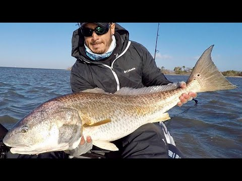 Best Cut Bait Rig For Redfish & Black Drum (When Fishing The Flats)