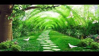 Воссоединение в Раю!