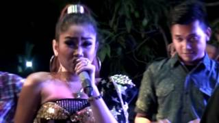 vuclip Cinta Bli Pasti -  Anik Arnika - Naela Nada Live Gebang Udik