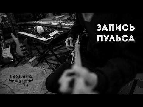"""Запись """"Пульса"""""""