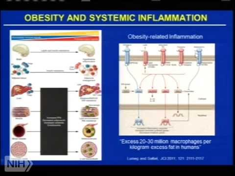 Redox Biology 2014 - Inflammation, Epidemiology