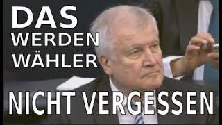 Bundestag - Das wird Ihnen der Wähler nicht vergessen Herr Seehofer - AFD
